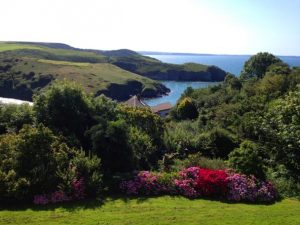 View from St Davids