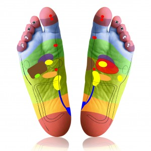 Reflexology Diagram of Foot